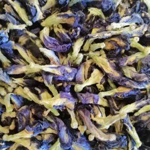 bleu butterfly pea tea