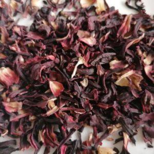 druk - hibiscus